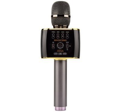 Magic Sing 2 in 1 Mobile Karaoke Microphone