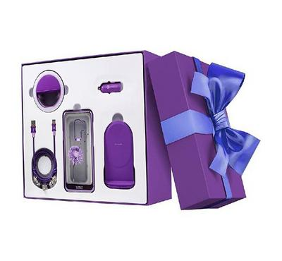 Mega Value Pack,Purple Standing Charger with Cable, Car Charger and Holder