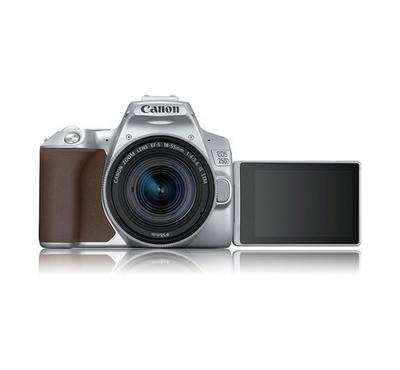 Canon EOS 250D 24.2 MP Digital Camera Silver