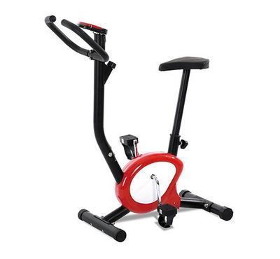 Body Builder, Exercise Bike