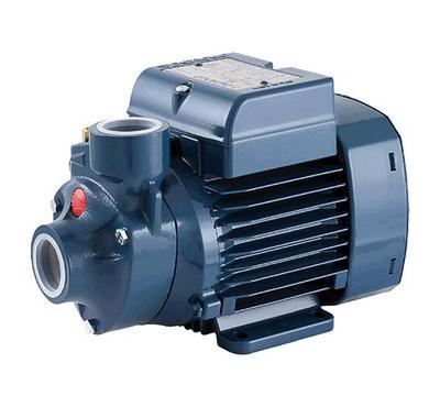 Padrollo Water Pump, 220-240V, Gray
